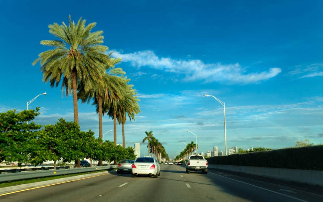 A Complete Guide To Moving Within Florida